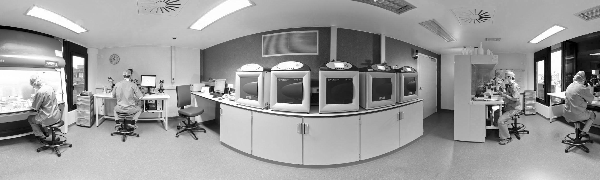 PMA-Fivette-FIV-Visite-Virtuelle-vue-360 black and white